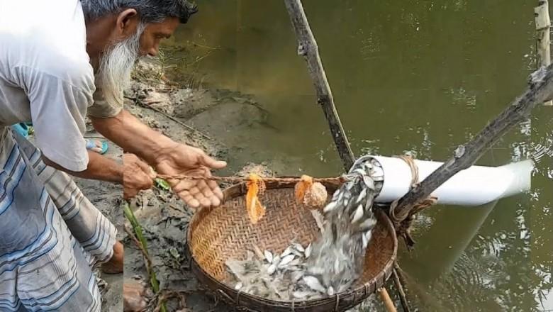 ловля рыбы бензопилой