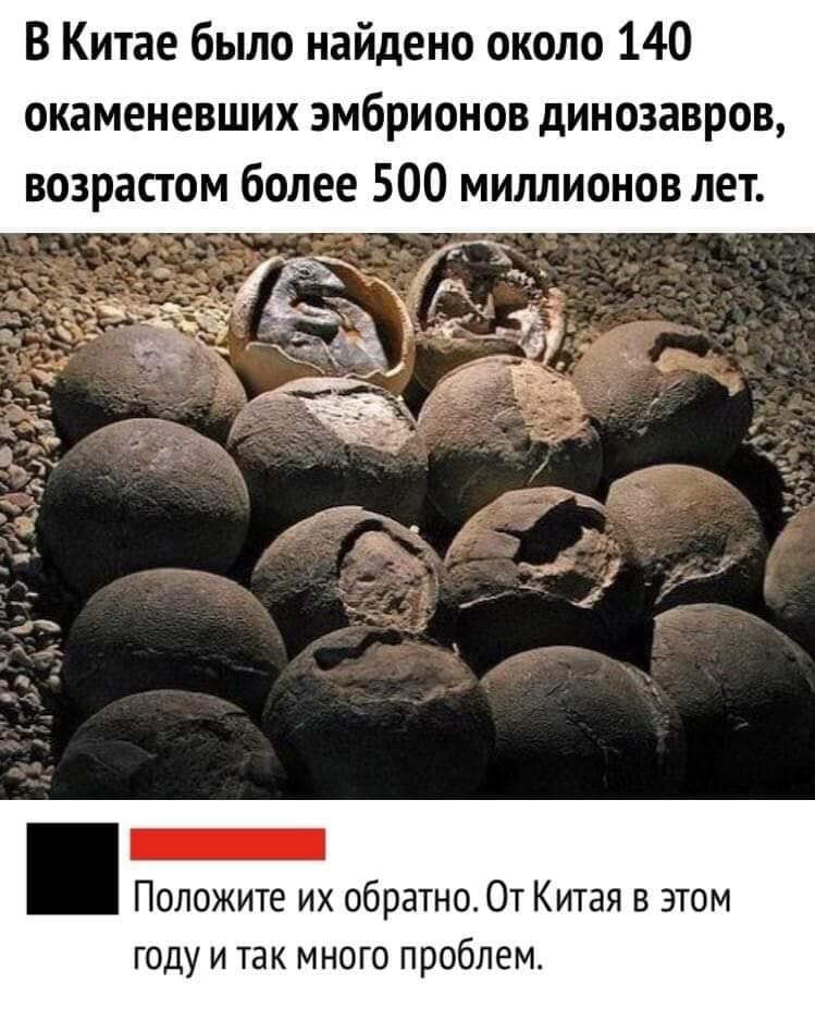Каменные яйца динозавров