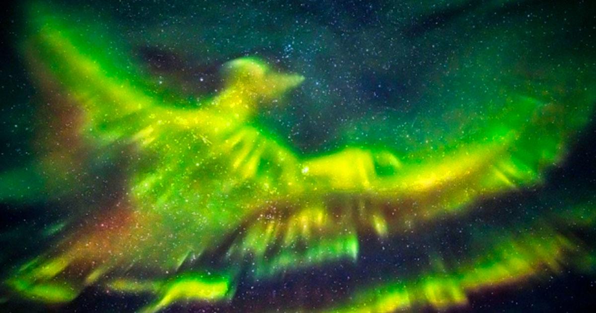 Северное сияние в форме Феникса